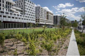La biodiversité labellisée au cœur de Nanterre Université